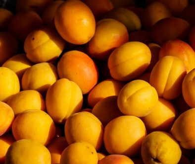 agriculture-apricot-color-confection-209416